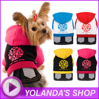 Free Designer Clothes Wholesale Cheap Free Shipping dog winter