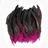 Wholesale 2014 new arrival seconds kill penas plumage feather trim cm dyeing cock feathers