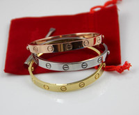 Wholesale 316L titanium steel Yellow Gold Silver Rose gold Bangle Bracelet with Screw without Stone for women or men pulseiras brazalete