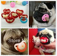 Wholesale Pack Pet products Dog toys Special toys Toys for dogs