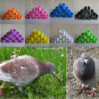 Wholesale 100Pcs Poultry Leg Bands Bird Pigeon Parrot Chicks Rings mm Numbered