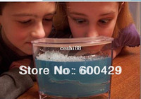 Wholesale 8pcs Smalll Size Ant Farm with Nutritious Gel Educational Ants Ecology Workshop Antworks Toy