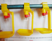 pvc pipe - POULTRY NIPPLE DRIP CATCHING CUP ATTACHES TO quot PVC PIPE CHICKEN COOP DRINKER with bowl