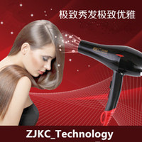 Wholesale Household Electric Blower High Power Hairdryer Fan Hot and Cold Low Noise Negative Ion Professional Blow Hair Dryer Red Yellow Black