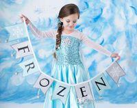 Cheap 2014 Frozen Princess Costume Blue Elsa Dresses With White Lace cape Girls Pageant Dresses Fashion Frozen Children's Dresses Ready in Stock