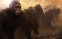 ape movies - Dawn Of The Planet Of The Apes Movie Poster x24
