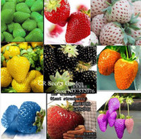 Wholesale 450 seeds Types of Strawberry Seeds Black White Yellow Blue Red Giant Orange pruple Green garden fruit plant free ship