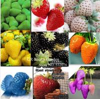 Cheap YY FARM 450 seeds 9 Types of Strawberry Seeds Black, White, Yellow, Blue ,Red, Giant ,Orange,pruple,Green garden fruit plant free shipping