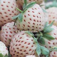 Cheap Fruit Seeds 120 seeds Best   strawberry seeds