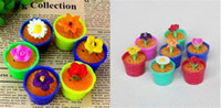 Wholesale 2014 Hot selling Noverty Recyclable MagicToy Magic inflation Flower Home Decoration growning in water very interesting bonsai