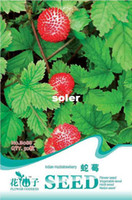 other Bonsai Outdoor Plants SEED-(Mix minimum order $5)1 original pack 50 pcs Indian Mock Strawberry Fruit Seeds balcony potted plants free shipping