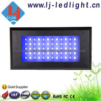 Wholesale Sales w w Dimmable led aquarium light for coral reef fishing tank two dimmers for blue amp white