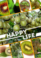 Flower Seeds Bonsai Outdoor Plants Thailand Mini Kiwi Fruit Bonsai Plants, Delicious Kiwi Small Fruit Trees Seed 35 Piece