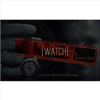 Wholesale Bryan Miles WATCH by Jacques Le Sueur magic teaching video send by email mentalism close up street magic