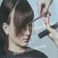 aesthetic products - 2014 Hair Styling Newest Product Box Clear Face Protector Film Practical Aesthetic Way to Protect Your Face