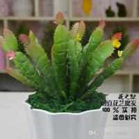 artificial cactus - The simulation of potted cactus simulation green plants small potted landscape planting artificial simulation
