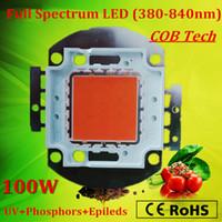 Wholesale 2015 high PAR intensity full spectrum nm W Bridgelux led grow light chip for plants seeding growing flowering years warranty