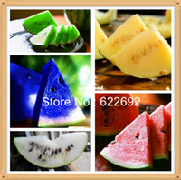 Wholesale High Quality Watermelon Seeds Platinum Combination Piece Each Of Variety Delicious Fruit Garden Vegetable