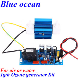 Wholesale BO QNAOS AC220V AC110V g h gram g g h adjustable Quartz tube type ozone generator Kit air purifier water sterilizer