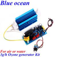 Wholesale BO QNAOS AC220V AC110V g h gram g g h adjustable Quartz tube type ozone generator Kit for aquaculture disinfection