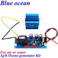 Wholesale BO QNAOS AC220V AC110V g h gram g g h adjustable Quartz tube type ozone generator parts ozone water purifier ozonator