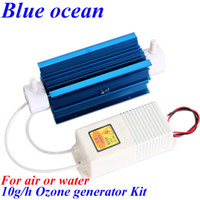 Wholesale BO QNAM AC220V AC110V g h ozone generating tube power ozone generator kit Drinking water disinfection machine water sterilization