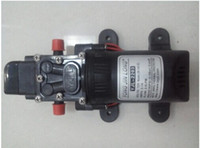 Wholesale RV Marine DC V Demand Fresh Diaphragm Water Pressure Self Priming Pump L Min PSI Caravan Boat RV dandys