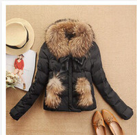 Wholesale winter coat women jacket color luxury large raccoon fur collar duck feather down coat ladies down Short fur coat YH010