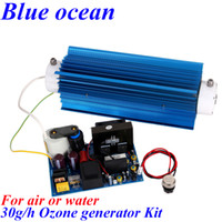 treatment wastewater treatment - BO QNWO AC220V AC110V g ozone generator Kit High concentration ozone generator for Swimming pool or wastewater treatment