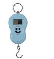 Wholesale Portable electronic scale hanging scale with g to KG capacity DHL