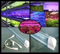 Wholesale 100Pcs CM Length Indoor Plant Tissue Culture Lights W Full Spectrum Led Grow Tube Light D309