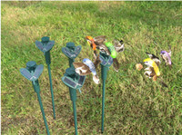 Wholesale 2014 New Solar hummingbirds butterflies garden toys students enlightenment educational toys solar and battery combo
