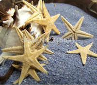 Wholesale 50pcs Natural Starfish Sea Star For Wishing Bottle Creactive Wall Stickers Eco friendly Adornment Material cm