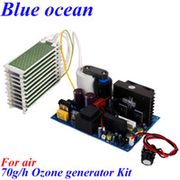 Wholesale BO PWAO AC220V AC110V g h ozone generator Multifunctional air sterilizing and deodorizing equipment Prevention of avian influenza