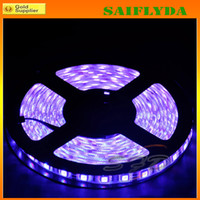 Wholesale HOT RGB LED LED Strip Light Waterproof RGB LED M sets DC V Flexible leds with remote controller for Christmas