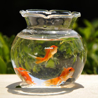 glass fish bowl - Mxmade mini transparent glass fish tank goldfish bowl hydroponics vase home desktop decoration HP