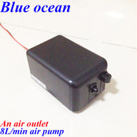 Wholesale BO AP AC220V AC110V DC12V DC24V L min ozone air pumps for ozone generator accessories ozone generator parts air compressor