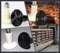 Lighting Anole & Chameleon  100Pcs lot 75W 110v 220v Ceramic Emitter Heated Pet Appliances for Reptile Heat Lamp Light P401