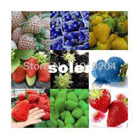 other Bonsai Outdoor Plants Free shipping (9 packets), 9 kinds of strawberry seeds 900 PCS + 100 seeds per bag, plants, gift