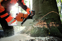 Wholesale 2 ST660 Chainsaw MS660 Wood Saw Chain Saw Gasoline CC Engine Power KW RPM Single Cylinder excellent_sale