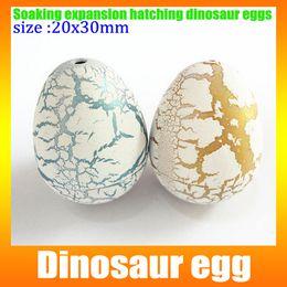 Wholesale small dinosaur egg cm Dinosaur egg water expansion hatched dinosaur eggs hatching eggs novelty Commodity box
