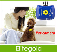 Wholesale HD VGA Mini Pet Camera Mega Pixels CMOS Suppor Micro sd Record Your Pet Video sound Photo DHL Free