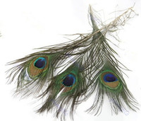 Wholesale Fashion Hot Pack Beautiful Natural Peacock Tail Feathers About inch For DIY Decoration