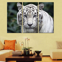 Wholesale Home Decor HD Print Animal art painting on canvas No frame White Tiger