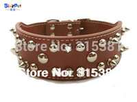 big red pitbulls - Size M L XL Real Leather Spiked Dog Collar for Pitbulls Big Bulldog Brown and Red Color
