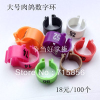 Wholesale High quality Large digital dove pigeon banding multicolour ring pigeon plastic foot ring