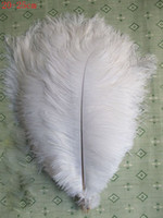 Christmas ostrich feather boas - white ostrich plumes feathers trim boa DIY black ostrich feather wedding party decor inch cm