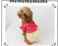 brand clothes cheap - hot selling and cheap new design light reflecting classic brand dog clothes for dogs
