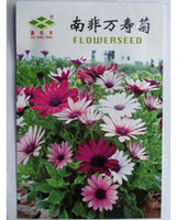 Cheap Flower seeds balcony bonsai 10 PCS bag Original packaging Home Garden Bonsai Tree Decor Pots Planters