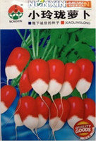 Cheap Vegetable seeds small and exquisite radish seed ginseng red whitebark white meat type Original packaging Home Garden Tree